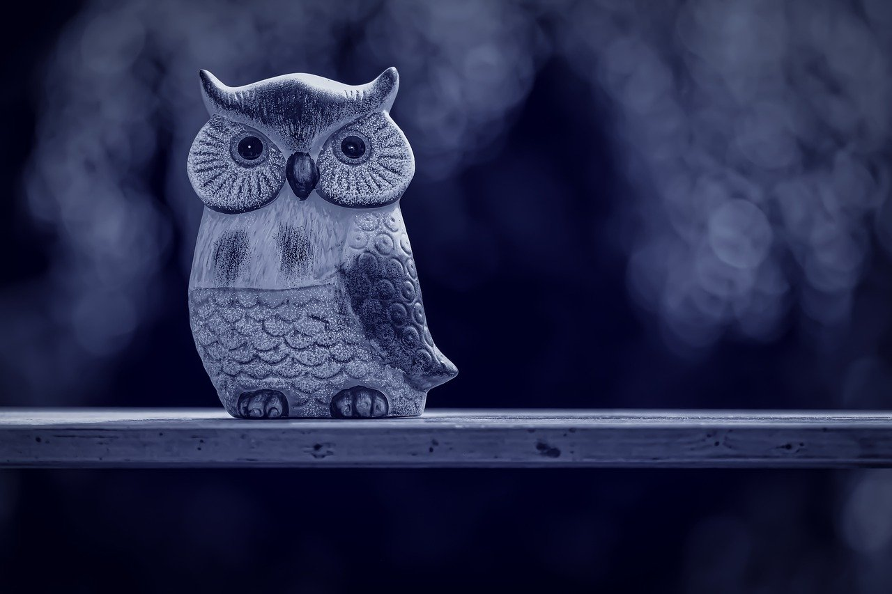 owl, forest, figure